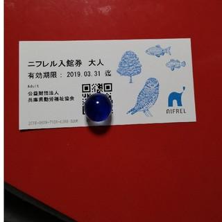 ニフレル 大人1枚 チケット(水族館)