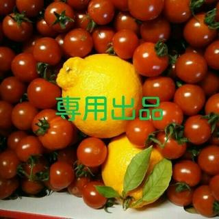 屋風様ご専用☆ミニトマト+柑橘(フルーツ)