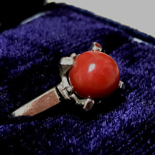 天然血赤珊瑚 silver リング 18号(リング(指輪))