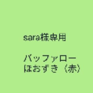 sara様専用 ベリー【フルーツホオズキ】レッド 種子20粒(その他)