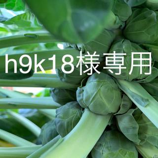 芽キャベツ1.5k g(野菜)