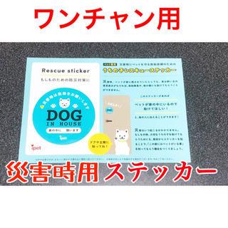 ペット用 災害時救出ステッカー (犬用)(おもちゃ/ペット小物)