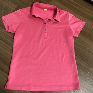 プーマ(PUMA)のPUMA  ゴルフウェアレディース  ポロシャツ(ウエア)