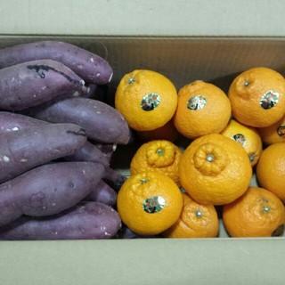 熊本産、不知火+蜜いも各5kg お試し計約10kg(野菜)