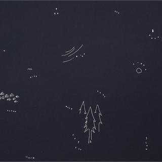 ミナペルホネン(mina perhonen)の専用⑦(宛名シール)