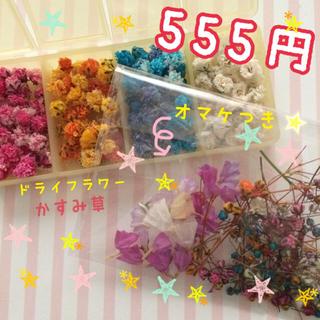 かすみ草 約130個+おまけ 555円(ドライフラワー)