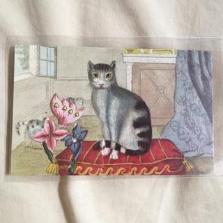 アッシュペーフランス(H.P.FRANCE)のJohn Derian ジョンデリアン ポストカード ① CALM CAT 猫(切手/官製はがき)