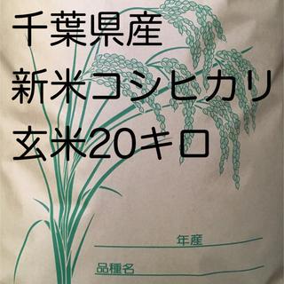 コシヒカリ玄米 20キロ(米/穀物)
