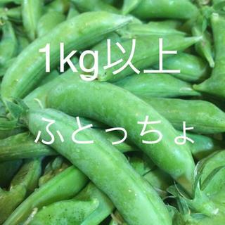 ふとっちょスナップえんどう 1kg以上(野菜)