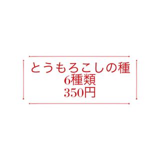 【コメント受付ページ】★送料込★とうもろこしの種6種類350円(野菜)