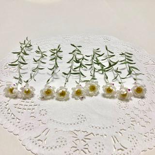 ドライフラワー 花材  花かんざし A-113(ドライフラワー)