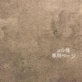 μ☆様 専用ページ(イヤリング)
