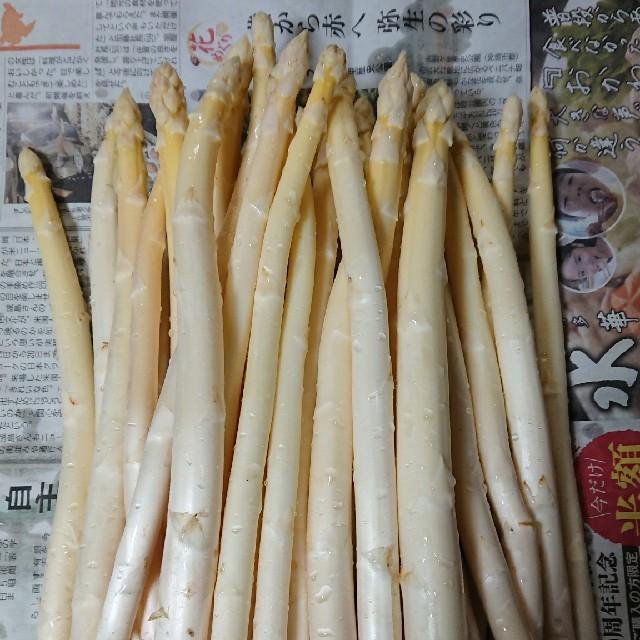 (増量!)佐賀県産ホワイトアスパラ1.5キロ(訳あり) 食品/飲料/酒の食品(野菜)の商品写真