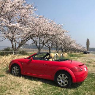 アウディ(AUDI)のアウディTT(車検2年間付き)(車体)