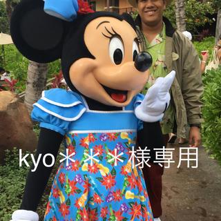 ディズニー(Disney)のkyo***様専用★4/30 ディズニー ハワイアウラニ(その他)