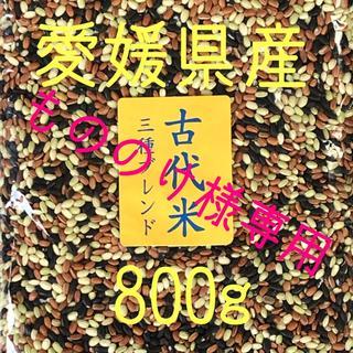 もののけ様専用  古代米3種ブレンド 愛媛県産 1600g(米/穀物)