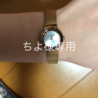スカーゲン(SKAGEN)のSKAGENレディース、お値下げしました!(腕時計)