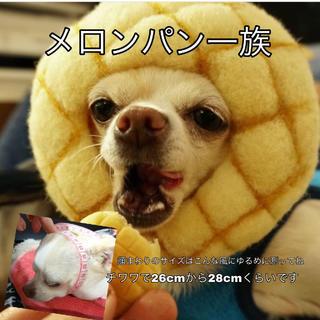 メロンパンのかぶりもの(おもちゃ/ペット小物)
