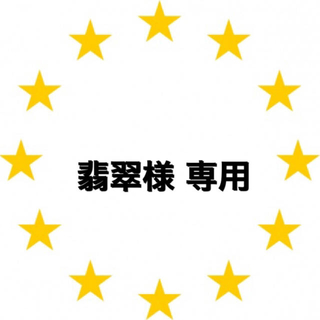 カワダ(Kawada)の翡翠さま 専用ページ   アイロンビーズケース入50p×42(各種パーツ)