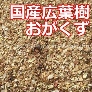 広葉樹おがくす300g 昆虫マット 小動物ペット餌♪(虫類)
