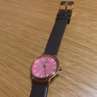 スカーゲン(SKAGEN)の【akane1811様専用】SKAGEN skw2107(腕時計)