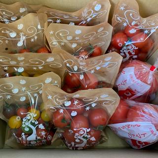〈お得セット〉大玉&ミニセット10袋 3kg(野菜)