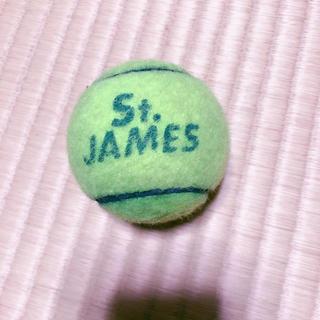 硬式テニスボール1個(ボール)