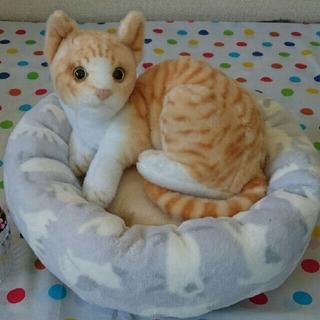 丸型猫クッション♪♪(おもちゃ/ペット小物)