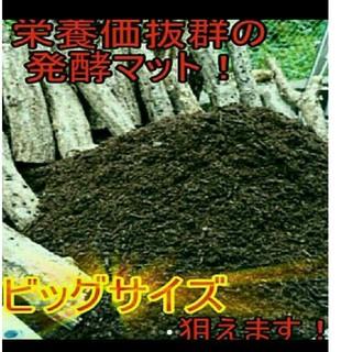 送料無料!40リットル ヘラクレスも巨大化!ヒマラヤひらたけ発酵カブトムシマット(虫類)