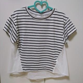 グリーンパークス(green parks)のボーダーカットソーTシャツ(カットソー(半袖/袖なし))