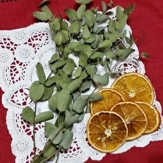ユーカリもドライオレンジの詰め合わせ(ドライフラワー)