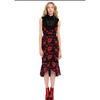 アリスアンドオリビア(Alice+Olivia)のアリスアンドオリビア モデル着用(ミディアムドレス)