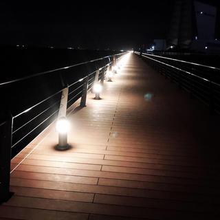夜景(プール)