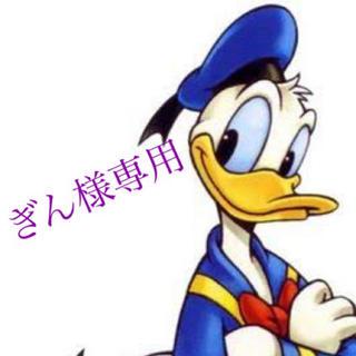 ディズニー(Disney)のぎん様専用✴︎ディズニーマジックキャッスル(その他)