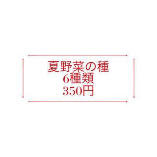 ★送料込★夏野菜の種6種類セット350円(野菜)