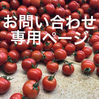 ミニトマトお問い合わせ専用(野菜)