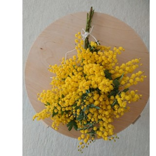専用→コットンロープで束ねた ミモザのスワッグ   ローズマリーリースセット(ドライフラワー)