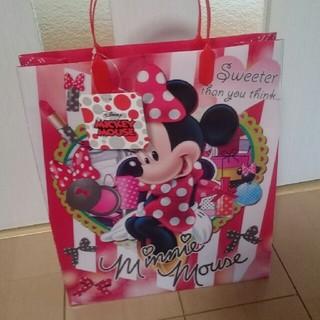 ディズニー(Disney)のディズニー手提げナイロン袋(バッグ/レッスンバッグ)