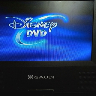 ポータブルDVDプレーヤー グリーンハウス(DVDプレーヤー)