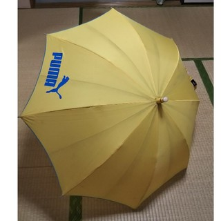 傘 puma 小学生(傘)