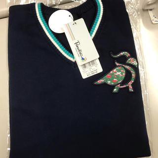 パラディーゾ(Paradiso)のセーター(ニット/セーター)