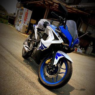 カワサキ - パルサーRS200. 程走行 フルカウル バイク