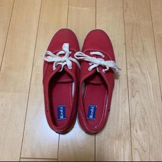 ケッズ(Keds)のkeds 22.5cm〜23.0cm(スニーカー)