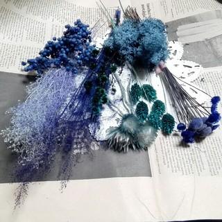 花材整理 ブルー花材セット(ドライフラワー)