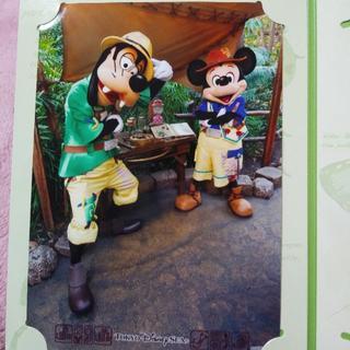 ディズニー(Disney)のグリーティングトレイルフォトファン(その他)