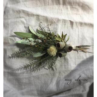 グレビレアとベルギーナッツと 若草色のグリーンが美しい スワッグ ドライフラワー(ドライフラワー)