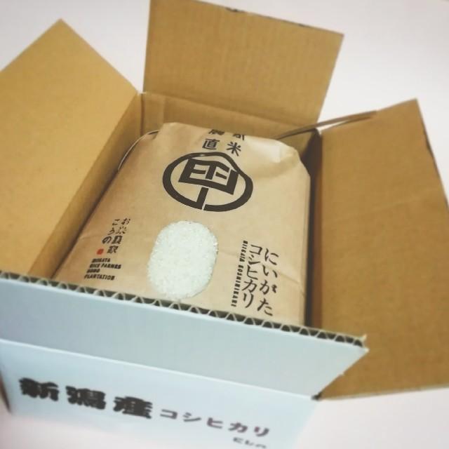 平成30年度産 特別栽培米 新潟コシヒカリ 5㎏ 農家直米 食品/飲料/酒の食品(米/穀物)の商品写真