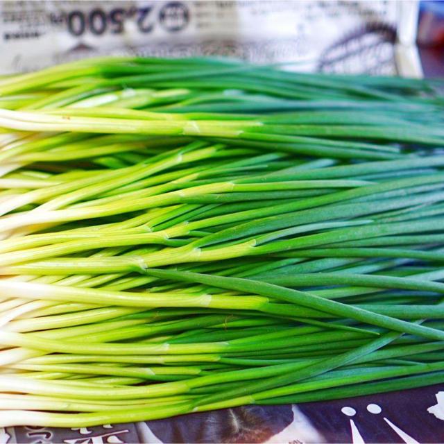 《栽培期間中農薬不使用/特別栽培農産物》わけぎ【メールボックス詰込み】 食品/飲料/酒の食品(野菜)の商品写真