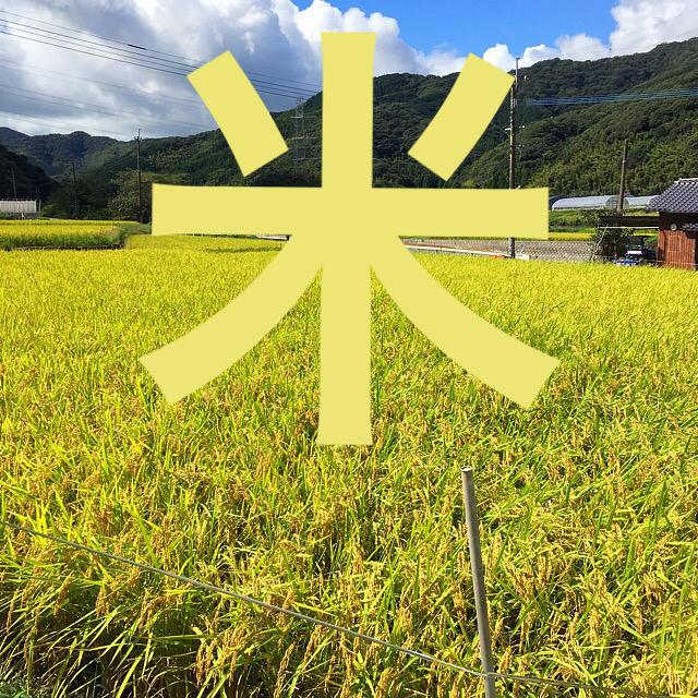 夢つくし 平成30年産 精米無料 20キロ 食品/飲料/酒の食品(米/穀物)の商品写真