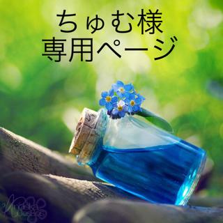 かすみ草 ドライフラワー  蕾〈定番カラー3種〉(ドライフラワー)